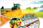 Agriculture projects Tender