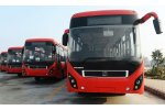 electric buses Tender