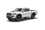 Global Tenders for Double Cab