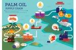 oil produced
